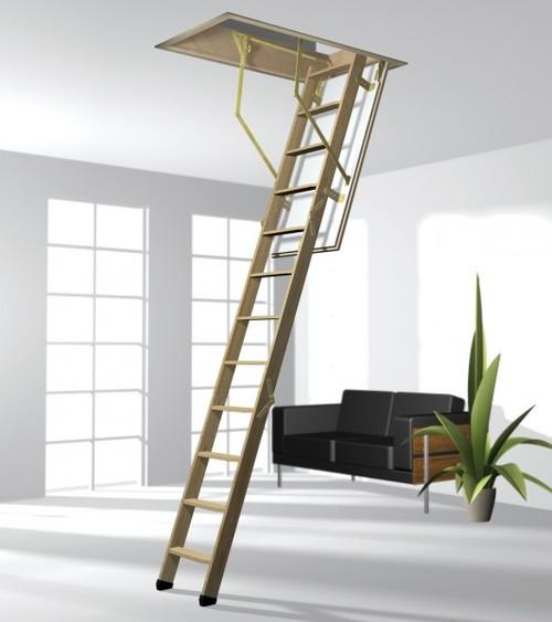 Общий вид выдвижной лестницы